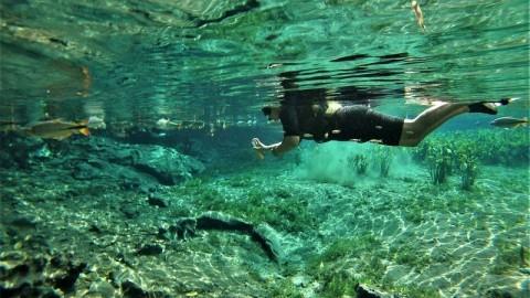 3 passeios de Flutuação e Mergulho em Bonito