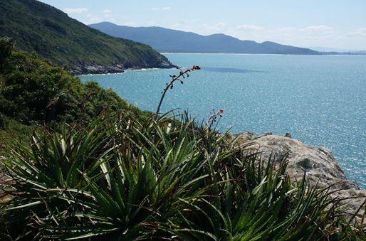 Paisagem na trilha entre praia do Matadeiro e Lagoinha do Leste.