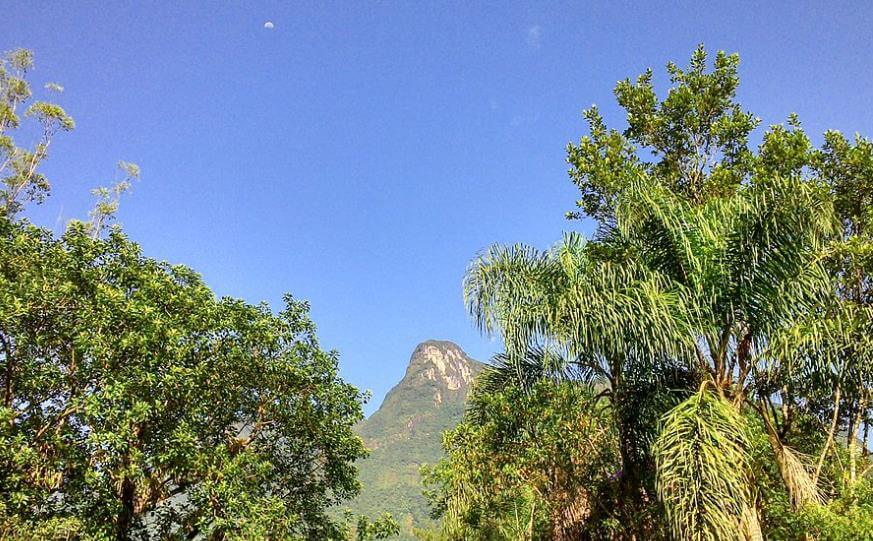 Serra do Mar Paraná
