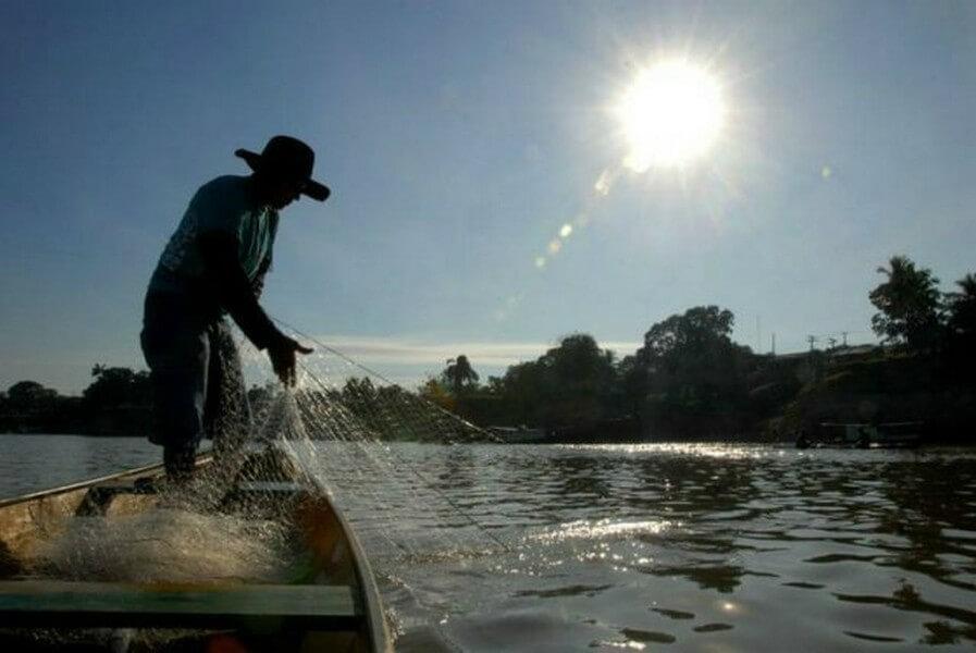 Pesca da Tainha na Ilha do Mel